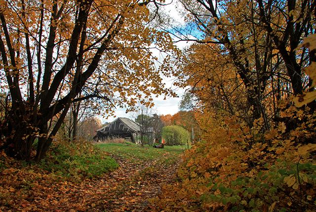 Первый дом, как въедешь в село или войдешь пешком - это дом Марковых.