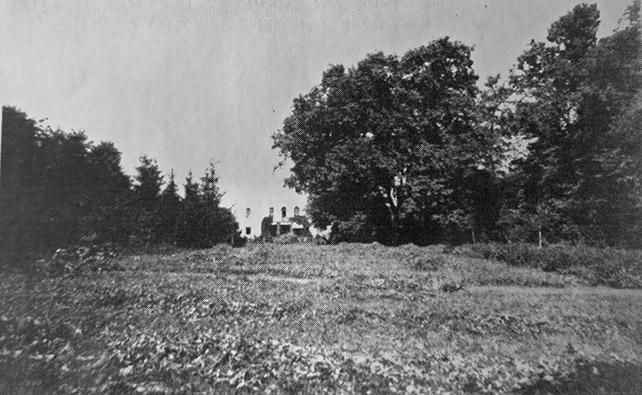 Вид усадебного дома в Финяеве