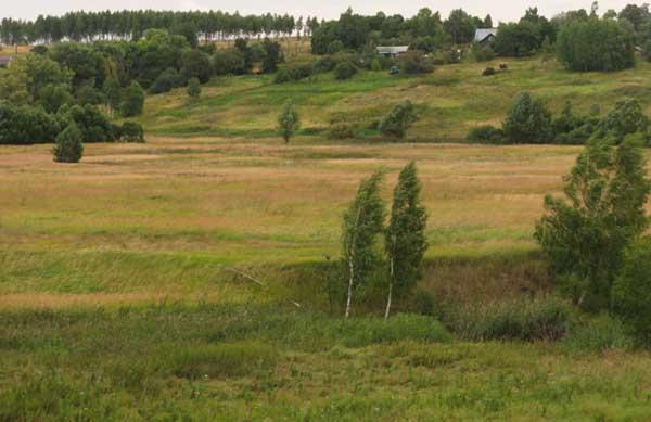 В пойме реки Кердь, на высоком берегу - Покровское. Август 2009