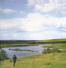 Река Кердь - приток реки Прони, c. Покровское I. Фото К.И.Маркова