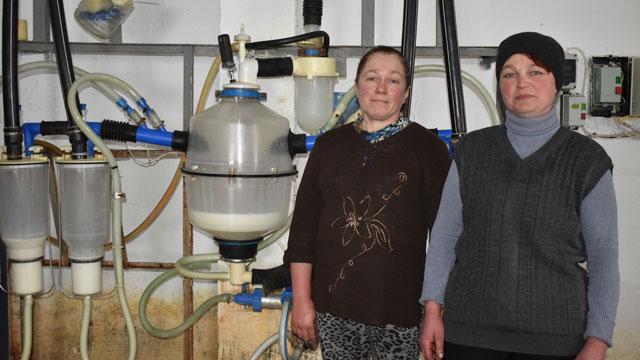 Мастера машинного доения из Михайловского района поделились секретом высоких надоев